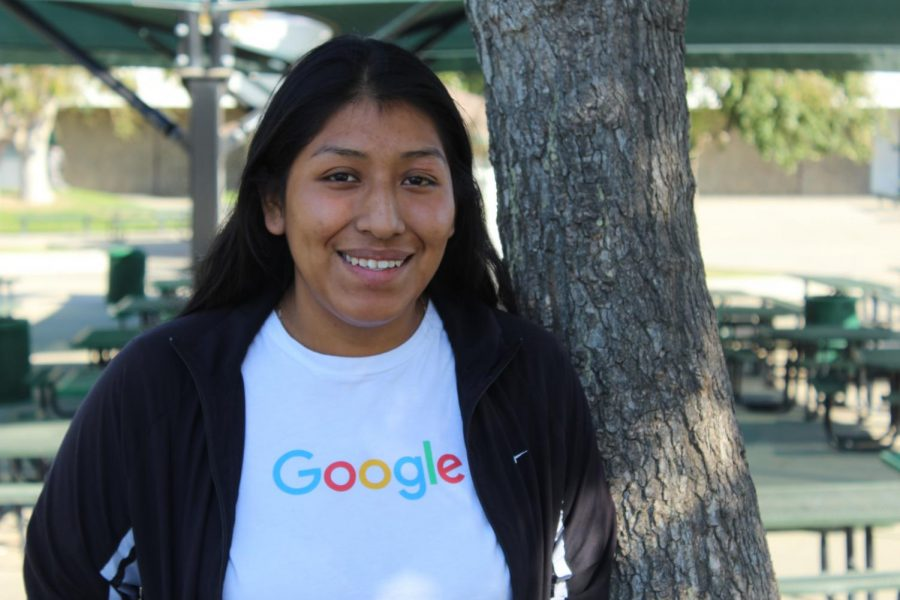 Luisa Sanchez