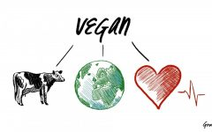 To go vegetarian/vegan or not?